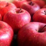 アップルパイにピッタリな「紅玉」はどこで販売してる?